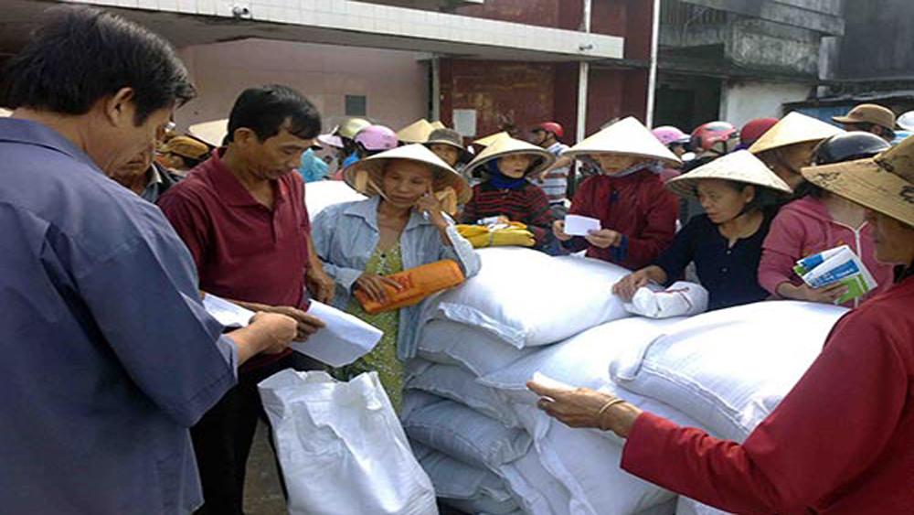 Thủ tướng chỉ đạo cấp gạo cho 7 địa phương hỗ trợ nhân dân dịp Tết